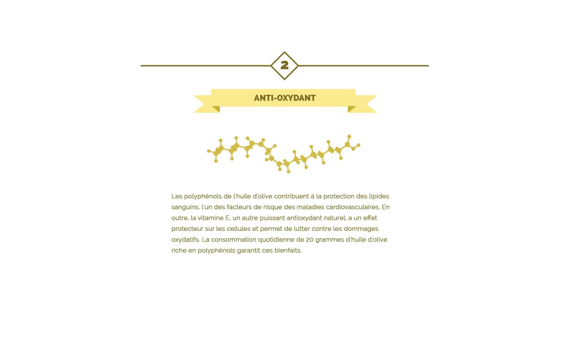 Les propriétés anti-oxydantes de l'huile d'olive
