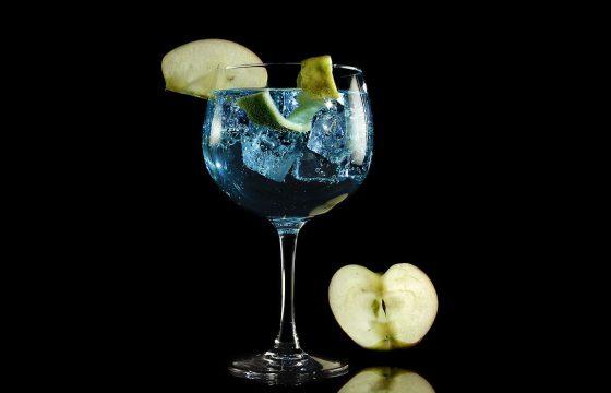 Gin Tonic avec Arbequina